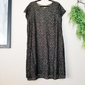 Lane Bryant | Olive & Black Lace Shift Dress